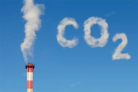碳中和.jpg